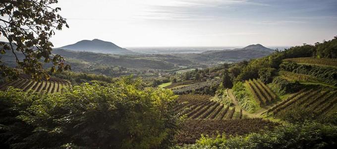 Cultural-routes-colli-euganei2